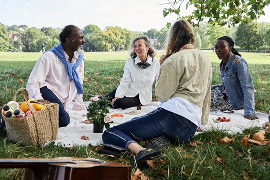 Senior friends picnic park.