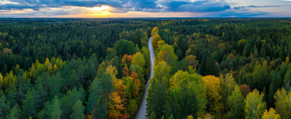 Latvian autumn nature. Forest and road. View from the top. Wall mural