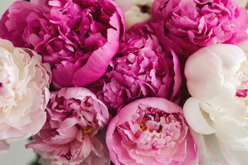 close up image of a variety of peonies