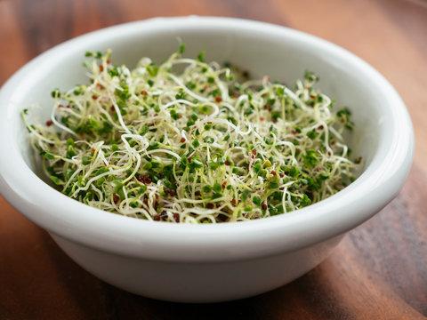 Rapini sprouts