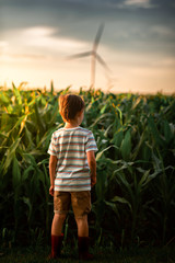 A small boy looking at corn in field