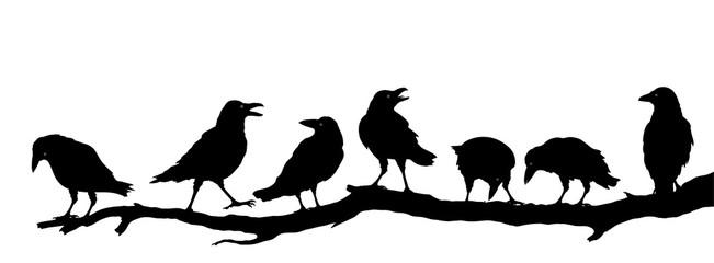 Rabenvögel am Ast, Raben Gruppe Silhouette, Vektor Illustration isoliert auf weißem Hintergrund