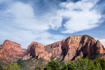 Red rock scenery at Kolob Canyons in Zion National Park, Utah, USA