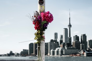 Flowers showing remembrance with the Toronto skyline in the background