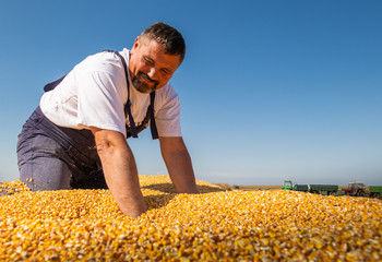 Happy farmer after harvest of maize