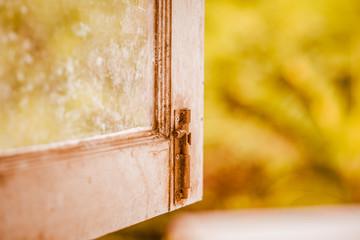 Open the autumn window