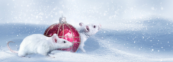 Chinese New Year. 2020 is the year of the rat. Winter artistic image. Banner format. Copy space.