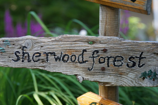 signs  with the names of fantasy forests