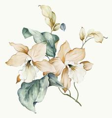 Ilustracja Kwiaty
