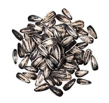 Striped sunflower seeds isolated on white background with clipping path, top view