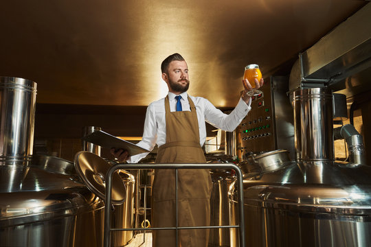Brewery expert inspecting beer, holding glass.