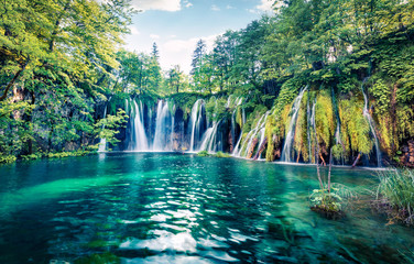 Poster de jardin Cascades Fresh morning view of pure water waterfall in Plitvice National Park. Picturesque spring scene of green forest with small lake, Croatia, Europe. Beauty of nature concept background.