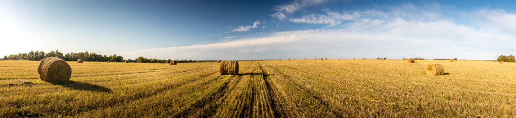 Photo sur Plexiglas Culture Haystacks on the field in autumn season with cloudy sky.