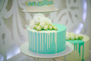 wedding cake. Torso in white and green colors. Candy Bar Decor. Cakes at a banquet in a restaurant. Homemade Sweet Cakes