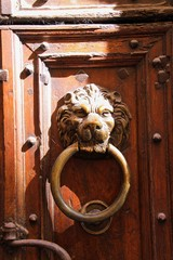 Close up of antique metal iron door knocker in shape of lion head with ring on old wood entrance with notches in bright natural sun light - Provence, France