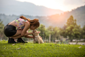 A woman kisses small pet a French Bulldog puppy on sunset in summer park
