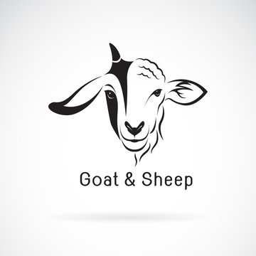 Vector of goat face and sheep face on a white background. Animals farm. Easy editable layered vector illustration.