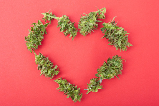 symbol of love from cannabis buds, heart made of marijuana on a coral color background