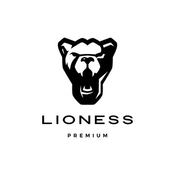 roaring lioness head logo vector icon illustration