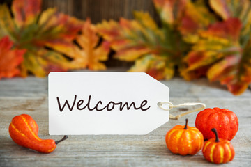 White Label With English Text Welcome. Wooden Background With Autumn Decoration Like Pumpkin And Leaves