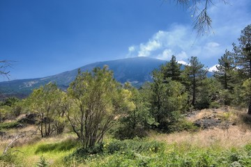 Etna Park Landscape, Sicily