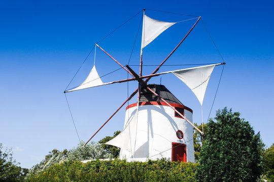 Greek windmill, Gifhorn, Lower Saxony, Germany, Europe