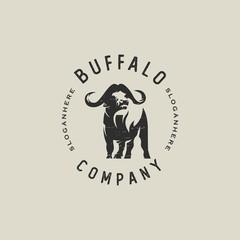 classic buffalo logo template vector design illustration