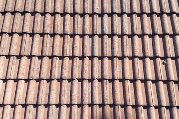 Orange terracotta roof tiles on a house.