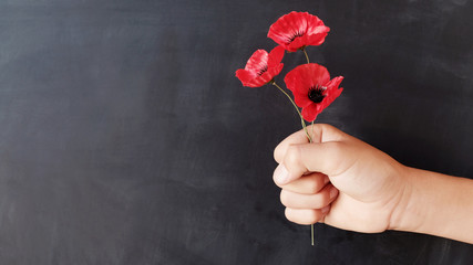 Hand holding red poppy flowers, remembrance day,  Veterans day, lest we forget concept