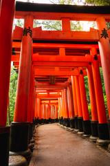 An empty path between beatuful red torii gates in the Fushimi Inari shrine in Kyoto, Japan