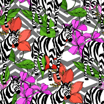 Vector Exotic zebra print wild animal isolated. Black and white engraved ink art. Seamless background pattern.
