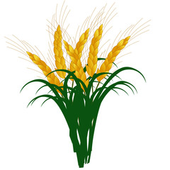 Colorful Wheat - Cartoon Vector Image