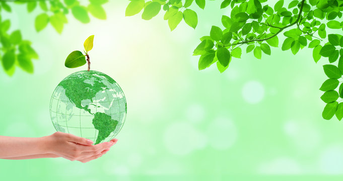 Ecology Concept : Hand holding green planet earth globe with green trees in background.