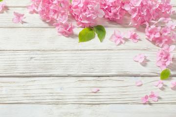Zelfklevend Fotobehang Hydrangea pink hydrangea on white wooden background