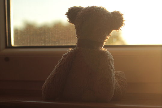 Teddy bear sitting on a window sill looking through the window during the golden hour.