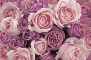 Background of Pink Vintage Roses