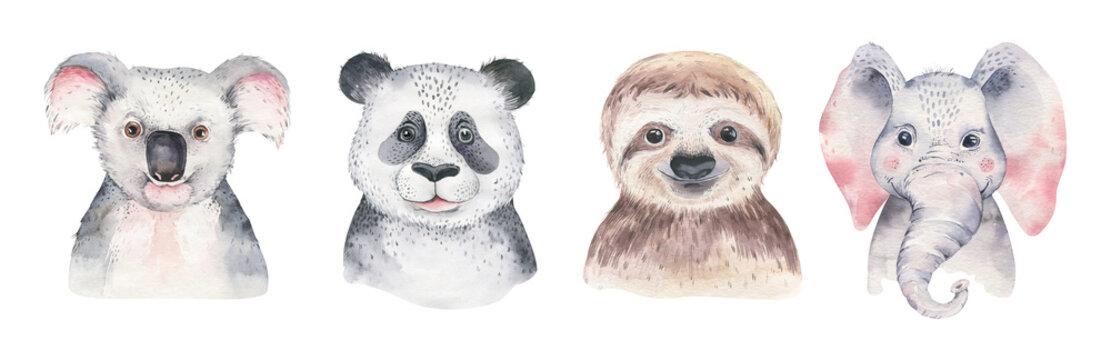 A poster with a baby panda, sloth, giraffe and koala. Watercolor cartoon elephant tropical animal illustration. Jungle exotic summer print.