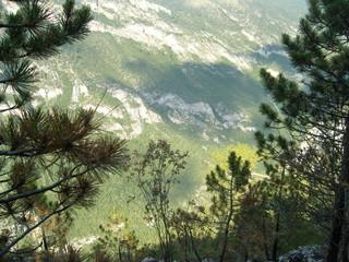 Spoed Foto op Canvas Olijf River Tara gorge Montenegro summer landscape