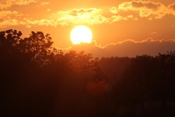 Papiers peints Marron soleil couchant
