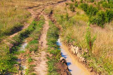 Wet empty dirty rural road perspective
