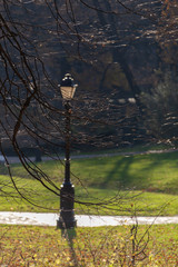 Sunlit street lamp in city park in autumn, Moscow, Russia