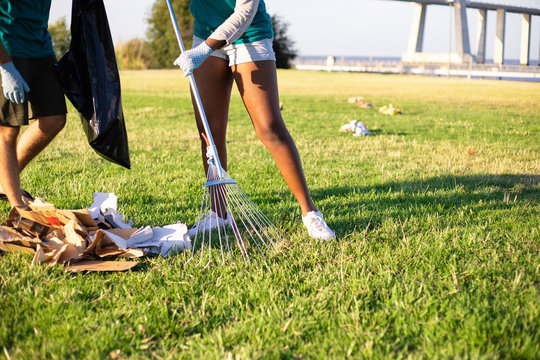 Eco volunteer picking up litter on lawn. Legs of woman gathering paper trash with rakes on grass. Waste removal concept