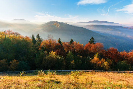 misty sunrise in carpathian mountains. amazing nature scenery in fall season. trees in red and orange foliage. hillside in weathered grass. distant ridge in hazy atmosphere beneath a blue sky