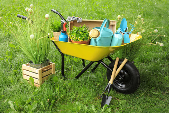 Composition with gardening tools on green grass