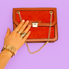Fashion clutch bag and stylish gold jewelry. Trends Lady Accessories
