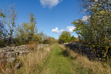 Footpath surrounded with old dry stone walls