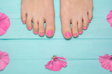 Fotorollo Pediküre hot pink pedicure. top view of legs with pedicure. leg against the background of blue boards around pink flowers. blue wood background