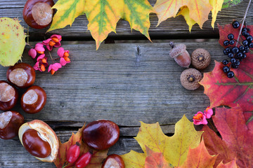 An autumnal frame of colorful leaves, fruits and chestnuts with wooden space photographed in the middle from above