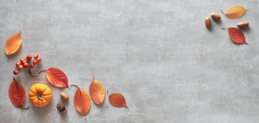 Autumn background, flat lay in gray and orange. Decorative pumpkin, acorns, berries and red leaves arranged on gray concrete or stone background. Panoramic top view image with copy-space. Fototapete