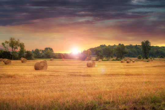 Field of freshly bales of hay with beautiful sunset in background. Beautiful countryside landscape.